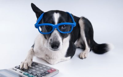 Anthony R. Mauriello, E.A.'s Under-Utilized Pet Tax Deductions